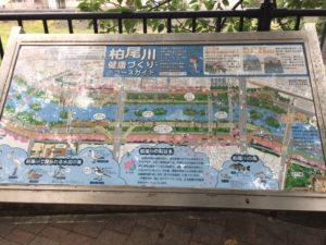 柏尾川案内図