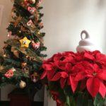 クリスマスイブの過ごし方♪