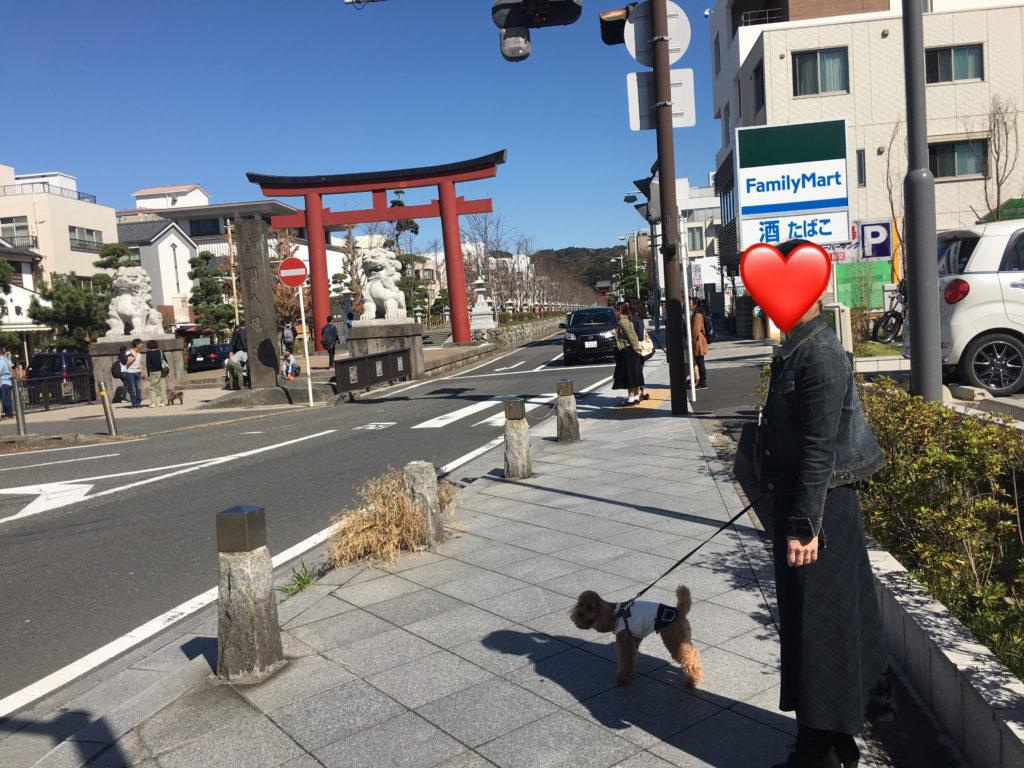 天気 鎌倉
