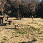 栄区『小菅ヶ谷北公園』