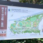 『神奈川県立保土ヶ谷公園』